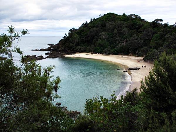 Whale Bay - Tutukaka, Tutukaka Coast, Northland, New