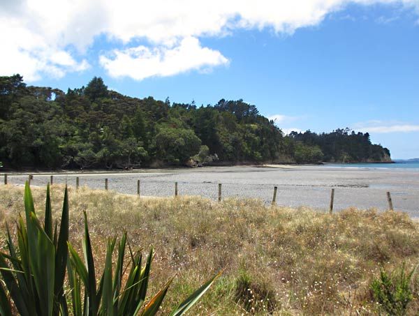 A scene near the Waiwera Hill Scenic Reserve on the Hibiscus Coast.  (Waiwera, New Zealand)