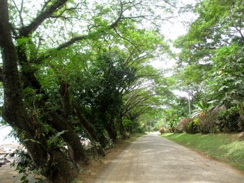 Walk (2)