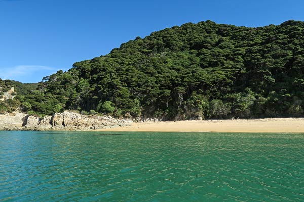 Emerald water, golden sand, and lush forest beckoned as we approached Mutton Cove beach.