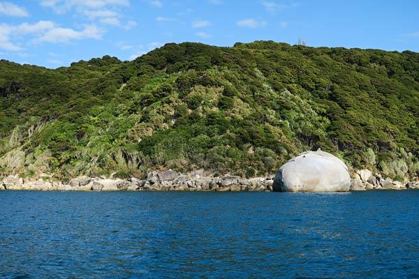 Cottage Loaf Rock along the Abel Tasman National Park coastline.   (Able Tasman National Park, New Zealand)