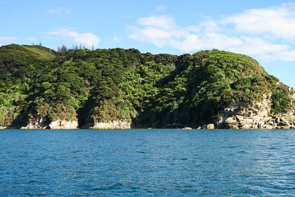 Wouldn't it be great to have a kayak here?  (Able Tasman National Park, New Zealand)