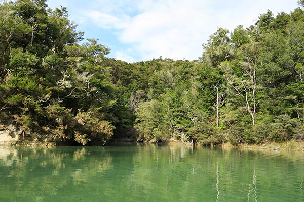 There are numerous coves tucked in along the water. We wished we had more time to explore.